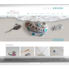 E-commerce website for contemporary art jewelry.